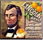 Lincoln Orange