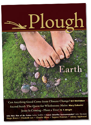 Plough Earth Cover