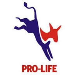 Pro Life Donkey
